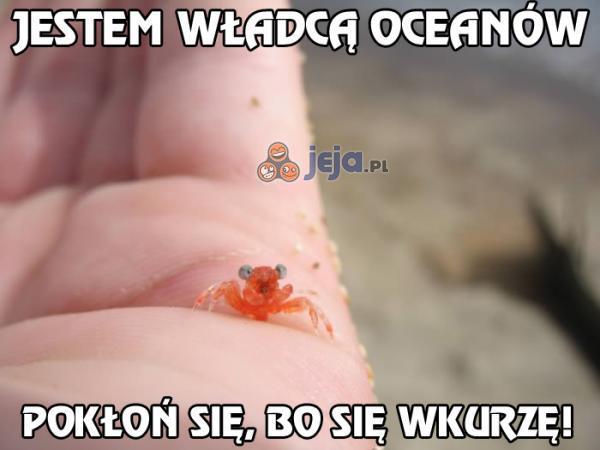 Jest władcą oceanów
