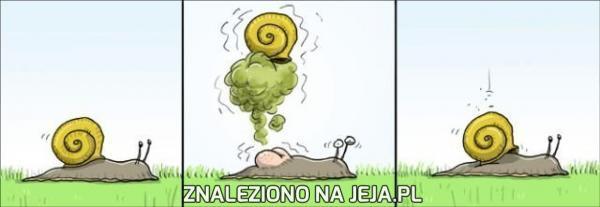 Dlaczego ślimak chodzi tak wolno?