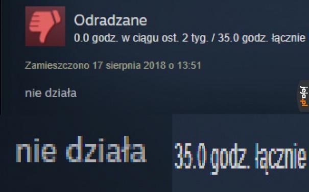Typowa recenzja na Steam