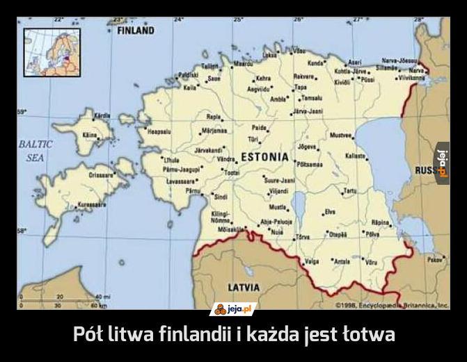 Bałtyckie śmieszki