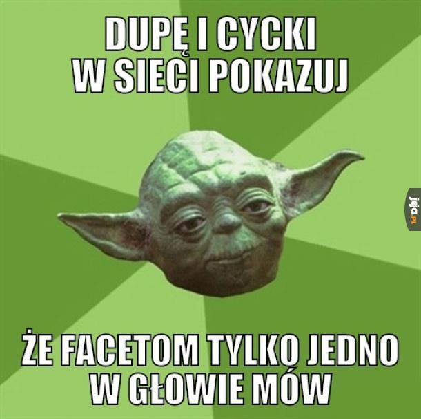 Mistrz Yoda prawi