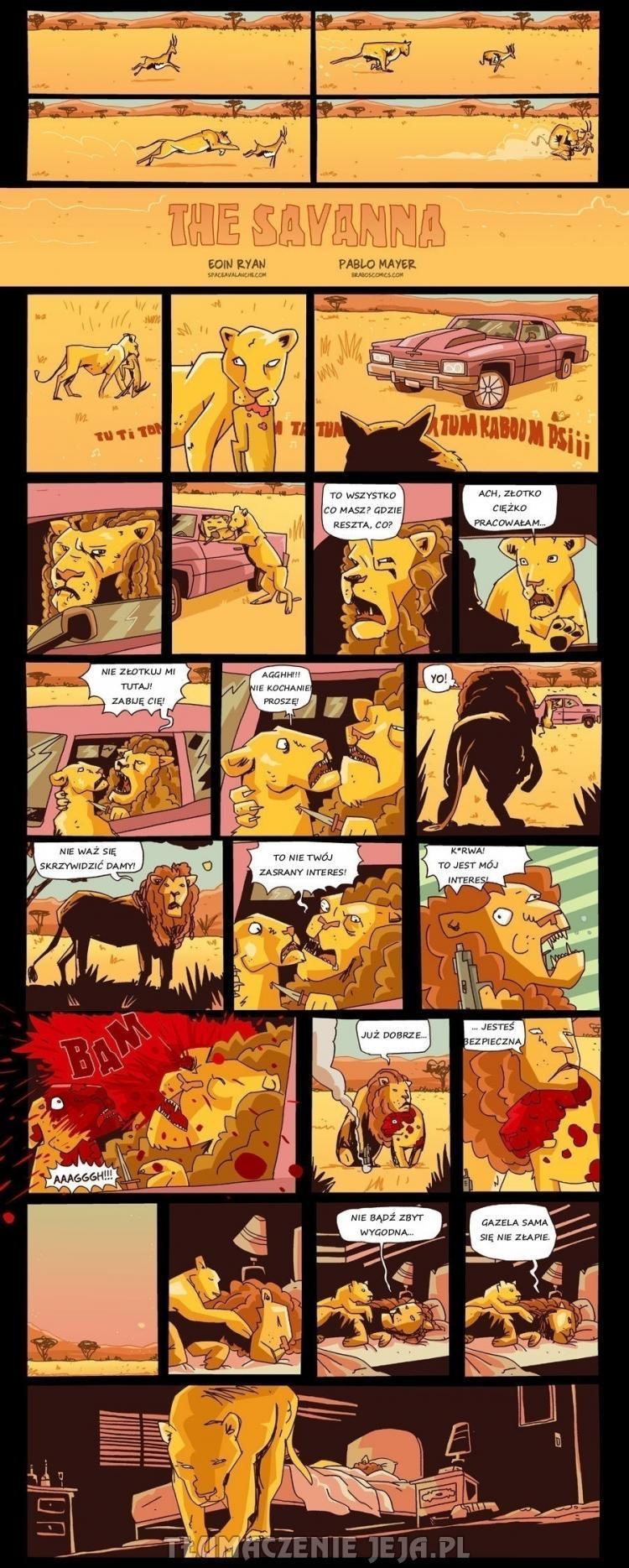 Życie lwicy