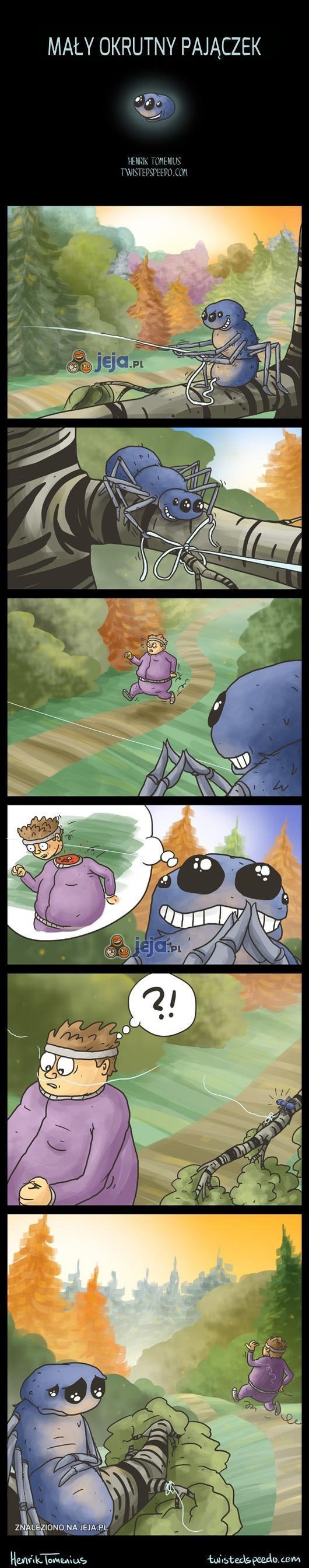 Mały okrutny pajączek
