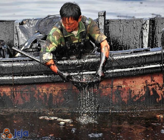 BP odzyskuje ropę po katastrofie