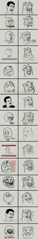 Memy prosto z dżungli