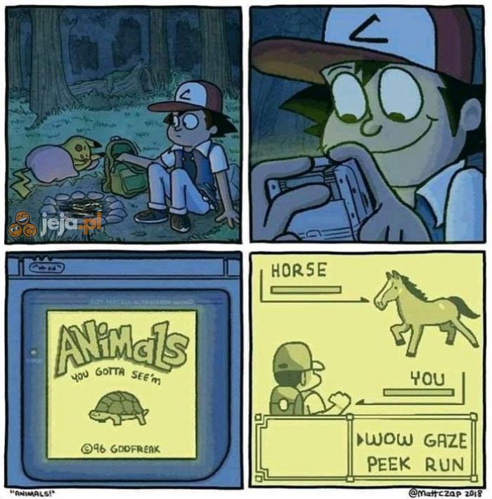 W co się gra w świecie Pokemonów