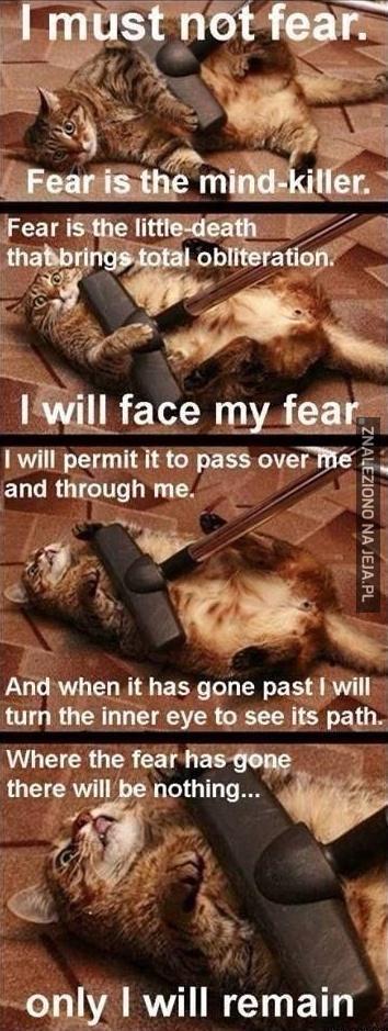 Pokonaj swój strach