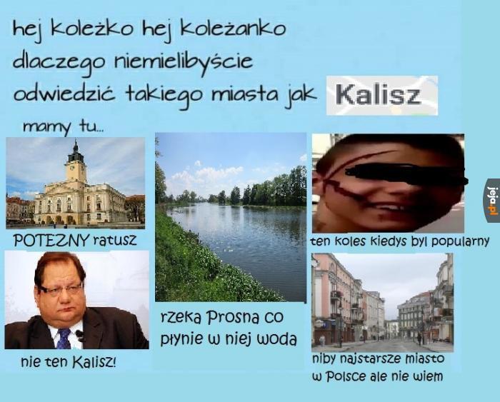 Promocji Południowej Wielkopolski ciąg dalszy