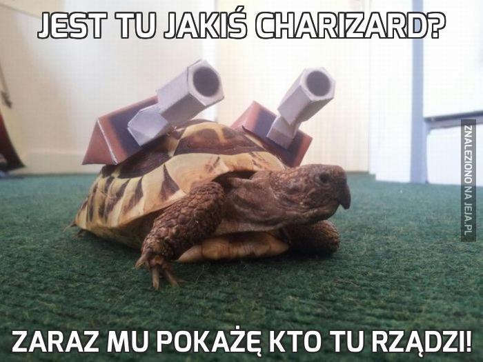 Jest tu jakiś Charizard?