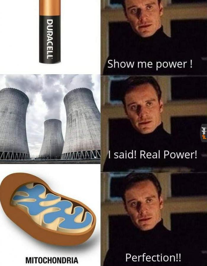 To elektrownia komórki