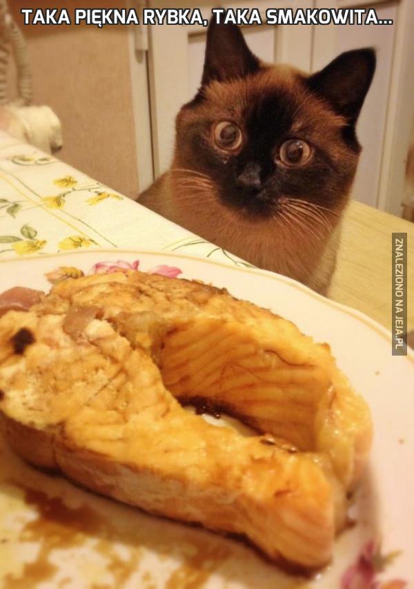 Taka piękna rybka, taka smakowita...