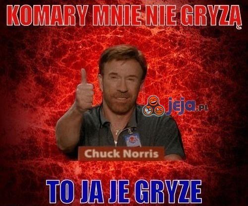 Chuck Norris i komary