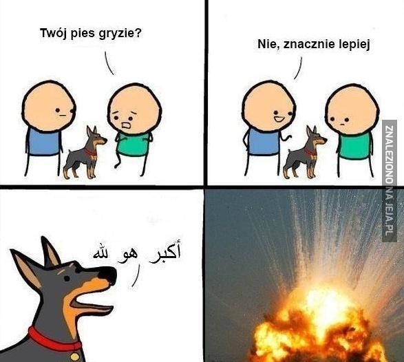 Bombowe umiejętności