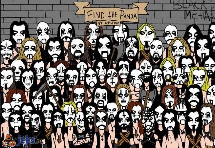 Znajdź Pandę