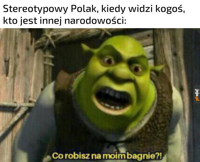 Stereotypowy ten mem