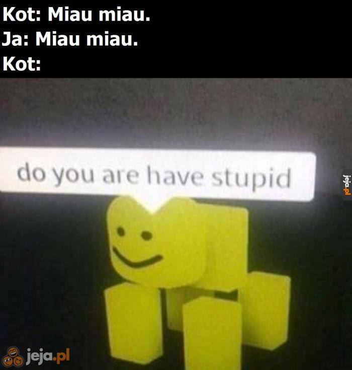 Co ty człowieku, głupi?
