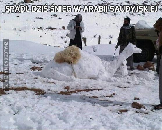 Spadł dziś śnieg w Arabii Saudyjskiej
