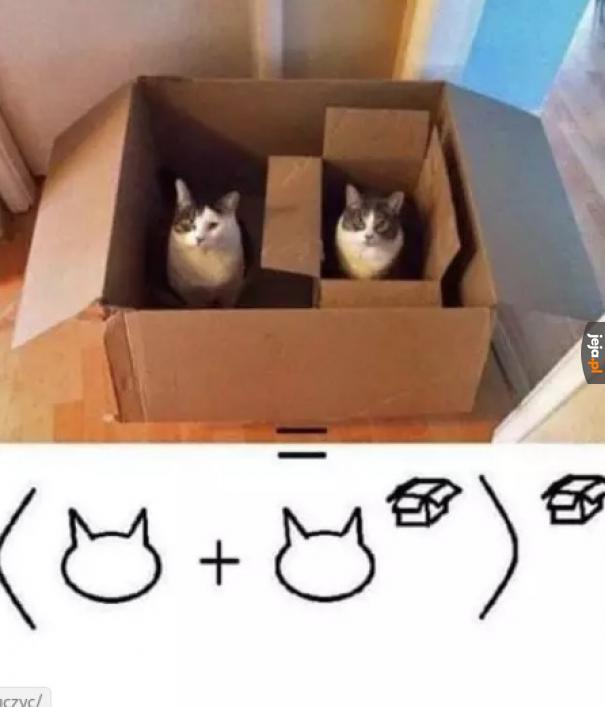 To prosta matematyka... Czego nie rozumiecie?