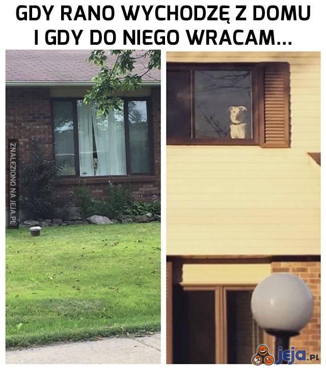 On zawsze czeka