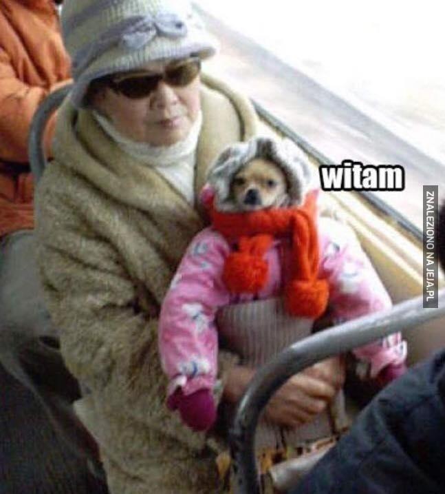 No witam!
