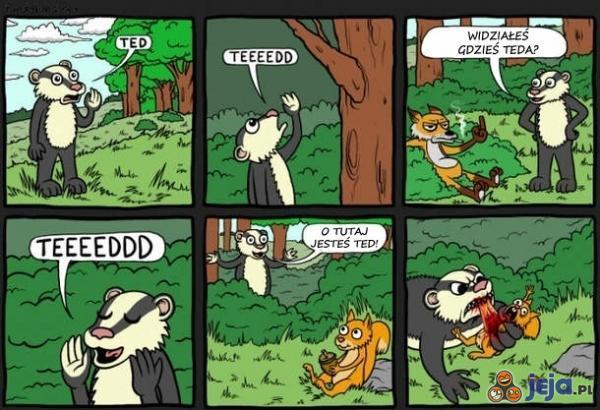 Gdzie jest Ted?