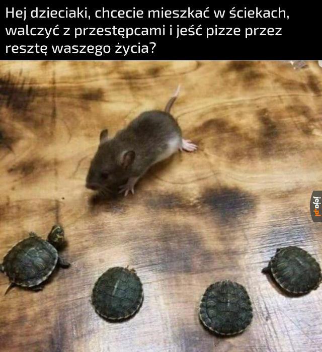 Super opcja, podejrzany szczurze