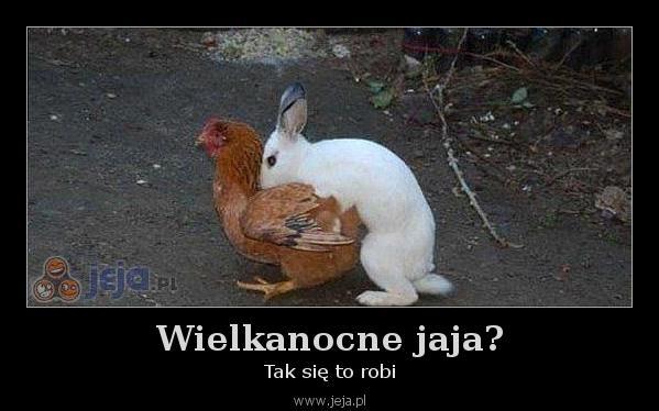 Wielkanocne jaja?