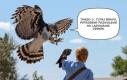 Potwierdzam, można lądować, odbiór!