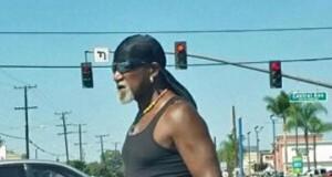 Nieodkryty brat Hogana