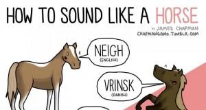 Odgłosy wydawane przez zwierzęta cz. I