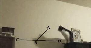 Matematyka nie jest jego najmocniejszą stroną...