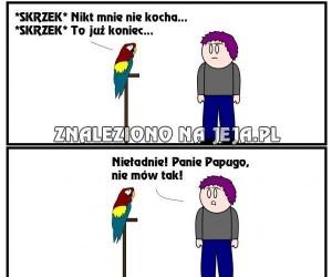 Biedna papużka...