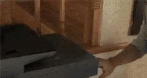 Drukowanie kota