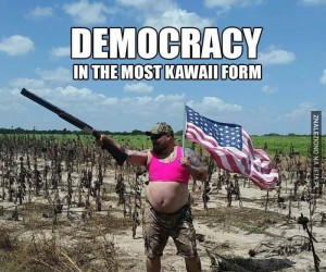 Demokracja kawaii