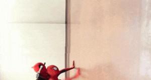 Spiderdog... Spiderdog...