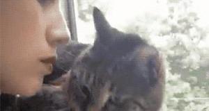 Nieee, tylko nie buziak!