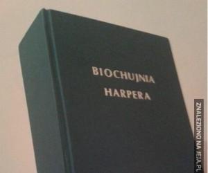 Jaka książka, taki tytuł