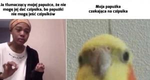 Biedna papużka, która nie może dostać czipsika :(