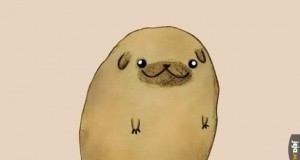 Mopsoziemniak
