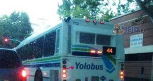 Yolobus