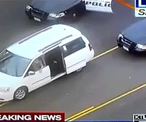 Policyjny pies wyciąga przestępcę z auta