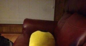 Homer zjadł moją nogę