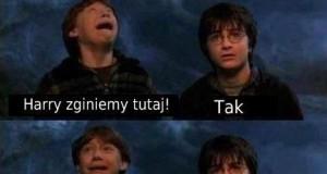 Harry i Ron wyznania w obliczu śmierci