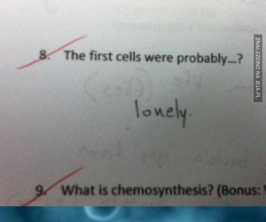 Pierwsze komórki tak bardzo samotne