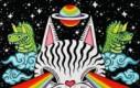 Jeżeli ten GIF zmienia w Twoich oczach kolor, to jesteś na LSD