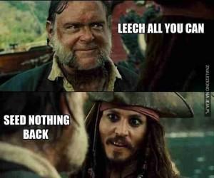 Internetowi piraci