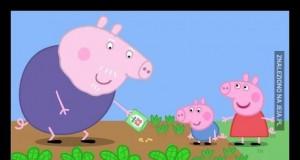 Dziadek świnka uczył Peppę i Jacka zasiewu marihuany