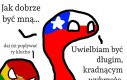 Problemy długich państw
