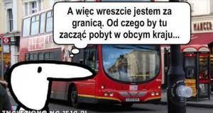 Polacy, wszędzie Polacy!