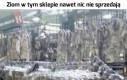 Jak tydzień afrykański w Lidlu